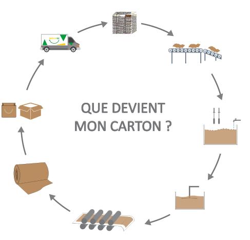 Cycle du recyclage du carton